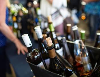 Breckenridge Food and Wine Festival Summer 2019