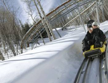 Gold Runner Alpine Coaster Breckenridge