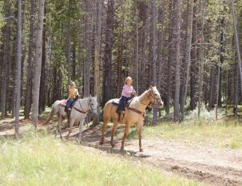 Horseback Riding in Breckenridge